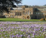 Forde Abbey - 2 miles from the holiday cottage